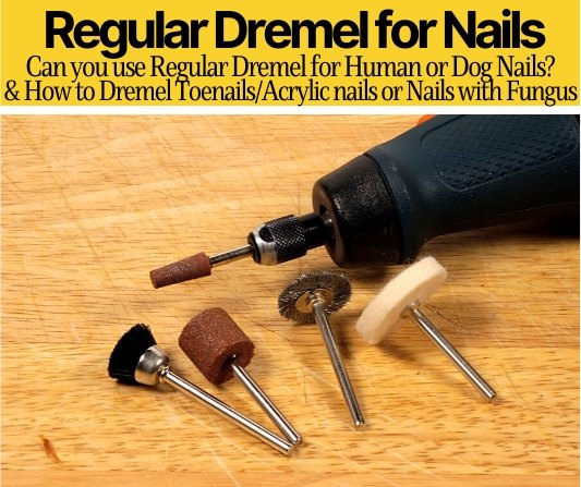 can you use regular dremel for nails