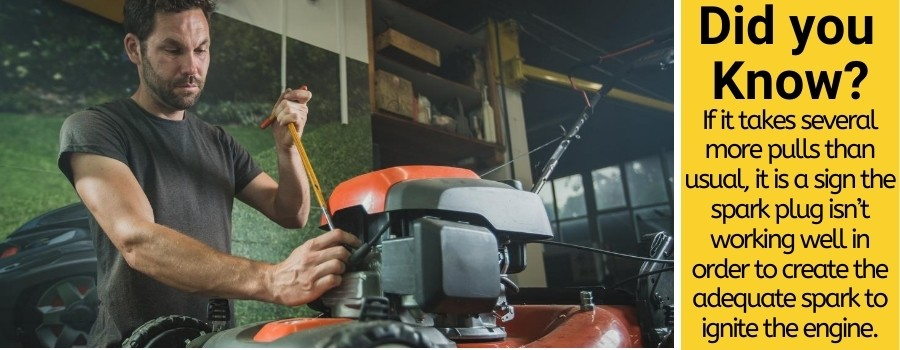 lawn mower spark plug lifespan