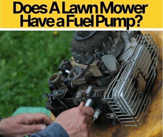 Does A Lawn Mower Have a Fuel Pump_
